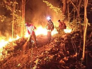 จนท.ป่าไม้ ทำหน้าที่อย่างสุดกำลังเพื่อดับไฟป่า (ภาพ : ปชส.อส.)