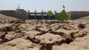 ส.อ.ท.หวั่นภัยแล้งปี 63 ฉุดผลผลิตทางการเกษตรวูบ 20-30%