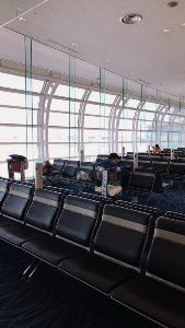 กลุ่ม นร.ไทยในสหรัฐฯ ร้องอยากกลับบ้าน หลังติดอยู่สนามบินญี่ปุ่น วอนขอความช่วยเหลือ