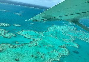 นักวิจัยบินสำรวจประเมินปรากฏการณ์ปะการังฟอกขาวของเกรทแบร์ริเออร์รีฟ (Handout / JAMES COOK UNIVERSITY AUSTRALIA / AFP )
