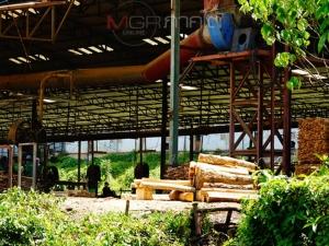 ชาวบ้านพัทลุงร้องหน่วยงานจี้แก้ปัญหาโรงงานอบไม้ยางพาราปล่อยควันเสียสร้างมลพิษให้ชุมชน