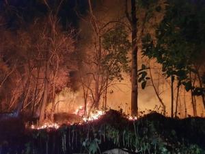 ระทึก! ไฟไหม้หนักป่ารกหลังศาลากลางเชียงใหม่-ผู้ว่าฯ รุดบัญชาการระดมรถดับเพลิงนับสิบจนเอาอยู่