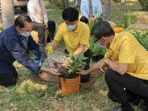 ผวจ.ชลบุรี ชวนประชาชนพลิกวิกฤตโควิด-19 เป็นโอกาสปลูกผักสวนครัวกินเอง