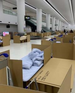 """กักตัวเมืองไทยนอนโรงแรม ญี่ปุ่นนอน """"ลังกระดาษ"""" กลางสนามบิน"""