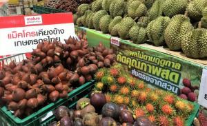 แม็คโครปูพรมรับซื้อผลไม้ช่วยชาวสวนสู้โควิด-19