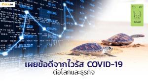 โควิด-19 ไม่ได้แย่เสียหมด! เผยด้านบวก มลพิษอากาศโลกดีขึ้น ธุรกิจออนไลน์ไทยโตพุ่ง 79%