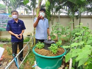 ผู้ว่าฯ เพชรบุรี  ชวนปลูกผักสวนครัวในรั้วบ้านตนเอง
