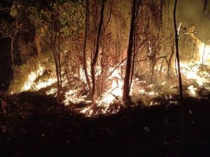 ศาลเชียงใหม่จำคุกพม่าจุดไฟเผาป่าเชียงดาว 2 ปี ไม่รอลงอาญา ปรับเฉียด 5 เเสน