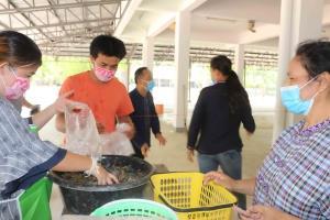 ประมงเมืองน้ำดำเร่งช่วยผู้เลี้ยงปลานิลกระชังเปิดตลาดเคลื่อนที่ขายกิโลฯ ละ 50 บาท