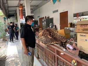 """หน่วยพญาเสือ จับแล้ว! ผู้ค้าซากสัตว์ป่า จากเฟซบุ๊ก """"ไตรเวทย์ อ้อมทอง"""""""