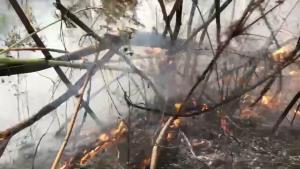 จนท.ทั้งป่าไม้ ทหาร และชาวบ้านระดมกำลังดับไฟป่าแม่แตงปะทุซ้ำ
