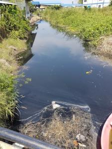 แนะตรวจสารพันธุกรรมโควิดในน้ำโสโครกช่วยเปิดเมืองได้เร็วขึ้น
