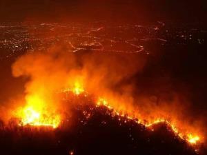 """เปิด 10 ภาพสุดสะเทือนใจ """"วิกฤตไฟป่าเชียงใหม่"""" เผาผลาญทำลายหลากหลายสรรพสิ่ง"""
