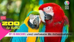 ไลฟ์สดพาชมสัตว์และให้ข้อมูลต่างๆ (ภาพจาก Facebook : สวนสัตว์เปิดเขาเขียว Khao Kheow Open Zoo)