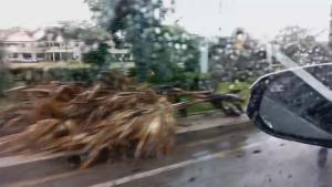 พายุร้อนลูกเห็บถล่มมุกดาหาร ชาวบ้านถูกฟ้าผ่าเสียชีวิต 1 ราย