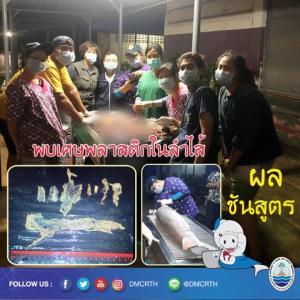 """รำลึก 1 ปี """"มาเรียม"""" พะยูนน้อยขวัญใจคนไทย ผู้สร้างแรงกระเพื่อมสู่การอนุรักษ์"""