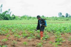วิกฤตอาหารโลก วอนรัฐช่วยเกษตรกร หยุดซ้ำเติมจากโควิด-19