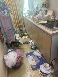 สาวโชว์ภาพห้องเละเทะ ย้ำไม่ได้ถูกแผ่นดินไหว เกิดจากเจ้าแรคคูนสัตว์เลี้ยงพังกรงออกมารื้อห้อง (ชมคลิป)