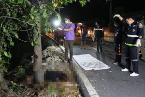 หนุ่มเบญจเพสซิ่งจักรยานยนต์เสียหลักชนต้นไม้ตายคาที่