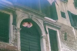 รู้ไหมว่าคลองเวนิสมีแมงกะพรุนเพิ่มขึ้นทุกปี