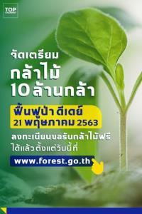 ทส.เตรียม 10 ล้านกล้า ฟื้นผืนป่าจากไฟไหม้ ดีเดย์ 21 พ.ค.นี้