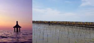 ป่าชายเลนบางขุนเทียน : หลักเขตกลางทะเล (ซ้าย) เส้นทางศึกษาธรรมชาติ (ขวา)