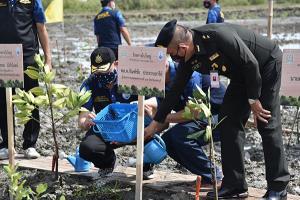 """กระทรวงทรัพย์นำอาสาสมัครปลูกป่าชายเลนเพชรบุรี """"วันป่าชายเลนแห่งชาติ"""""""