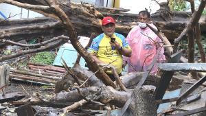 ลมฝนถล่มเมืองกรุงเก่าซัดต้นไม้เก่าอายุกว่าร้อยปี โค่นทับบ้านพังบาดเจ็บ1ราย