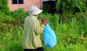 ไม่ง้อของแจก! คุณตาวัย 70 ปี ใน จ.ตราด เก็บผักกูดขายสร้างรายได้ช่วงโควิด-19