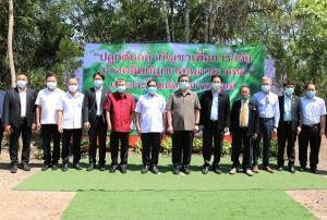 """""""มทส."""" ได้ฤกษ์ปลูกต้นกล้ากัญชารุ่นแรก 3,000 ต้น ตามแผนผลิตกัญชาคุณภาพใช้ผลิตยาไทย 9 ตำรับ"""