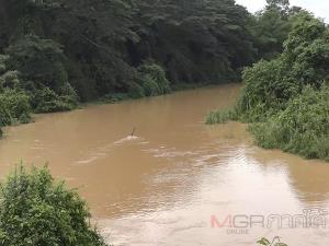 สะเดาฝนตกติดต่อกันหลายวัน ทำให้น้ำในคลองอู่ตะเภาตอนบนสูงขึ้นกว่า 1 เมตร