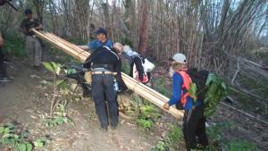 เหี้ยนแล้วนับ 100 ต้น..ซุ่มจับมอดไม้ตัดสักทองป่าแม่สอด ดัดแปลง จยย.ขนเป็นกองทัพมด