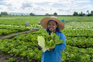 'เจียไต๋' แนะปลูกพืชเก็บเกี่ยวไว สร้างรายได้หมุนเวียน สู้วิกฤตโควิด-19