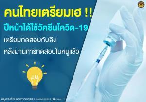 วัคซีน mRNA เตรียมทดลองกับลิง คนไทยเตรียมเฮ ปีหน้าได้ใช้วัคซีนโควิด-19