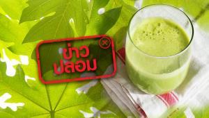 ข่าวปลอม! น้ำใบมะละกอปั่นสด ช่วยป้องกันและรักษา COVID-19