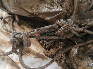 ผงะ! พบศพถูกฆ่ายัดใส่กระสอบฝังดินบนเนินเขาที่นาหม่อม คาดเสียชีวิตมาแล้วเกือบเดือน