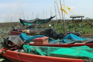 ชาวประมงพื้นบ้านแห่ขนเรือตั้งเพิงพักปักหลักหาปลากลางบึงบอระเพ็ดฝ่าแล้งหน้าฝน
