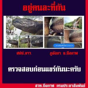 """เมืองไทยก็มี """"หินหัวงู"""" อยู่ที่ปัตตานี หลังชาวเน็ตแห่แชร์ของลาวคู่ """"ถ้ำนาคา"""" บึงกาฬ"""