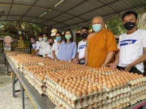"""""""พลภูมิ-ชญาดา-เนติภูมิ"""" มอบไข่ไก่สด 15,000 ฟองให้วัดคลองครุ เปิดโรงทานแจก ปชช.เสาร์นี้"""