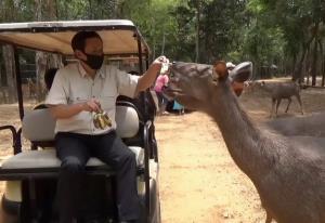 ข่าวดี! สวนสัตว์อุบลฯ พร้อมเปิดให้ชมเร็วๆ นี้ แต่งดให้ชมสัตว์พันธุกรรมใกล้เคียงมนุษย์