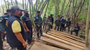 ตำรวจ ปทส.บินตรวจล็อกเป้าจับไม้เถื่อนซุกหลุมดินกลางดอยมูเซอตาก ครึ่งเดือนจับได้อื้อ