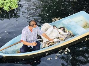 น้ำเน่า ทำปลานานาชนิดในคลองหน้าวัดวังน้ำเย็นตายเกลื่อน