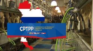 """In Clip: สื่อนอกรายงาน """"ไทย"""" เตรียมพิจารณาเข้าร่วมข้อตกลงการค้าเสรีความเป็นหุ้นส่วนทางเศรษฐกิจในภูมิภาคแปซิฟิก"""