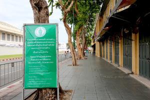 ถนนหน้าพระลานก่อนการรื้อถอนต้นไม้ (ภาพวันที่ 8 มิ.ย.63)