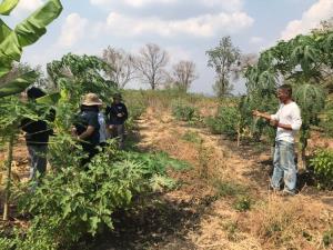 ซีพีเอฟหนุนสร้างความมั่นคงทางอาหารระดับชุมชน ปลูกผักปลอดสาร-ตั้งธนาคารเมล็ดพันธุ์