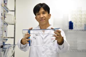 """แล็บแรกของไทยทดสอบพิษด้วย """"ตัวอ่อนปลาม้าลาย"""""""