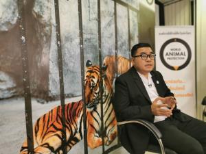 """""""องค์กรพิทักษ์สัตว์"""" จี้หยุดผสมพันธุ์เสือเพื่อความบันเทิง วอน ปชช.ร่วมลงชื่อ ผลักดันแก้ พ.ร.บ.คุ้มครองสัตว์ป่า"""