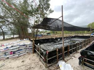 รายได้หลักแสน! ชาวบ้านไม้รูดแห่ตั้งแคมป์รับซื้อแมงกะพรุนจากกลุ่มประมงพื้นที่บ้านดองขายพ่อค้าคนกลาง