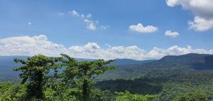 นักท่องป่ามีเฮ! อุทยานแห่งชาติปางสีดาพร้อมเปิดให้กางเต็นท์-ชมผีเสื้องาม 1 ก.ค.นี้