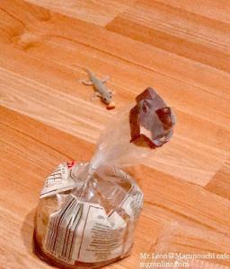 คนญี่ปุ่นกลัวจิ้งจก กลัวงู แต่ทำไมเชื่อว่ามันคือสัตว์นำโชคลาภเงินทอง